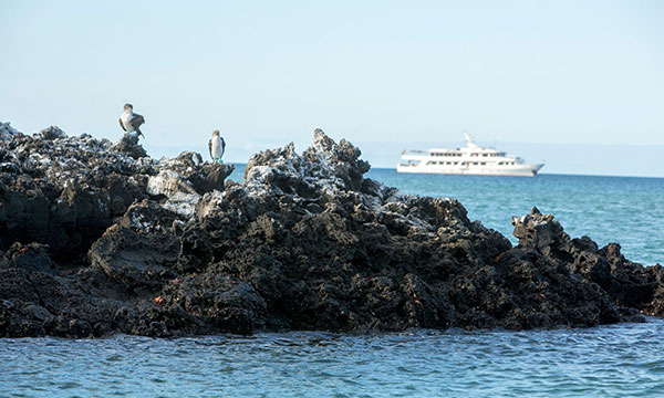 Galapagos Family Boats